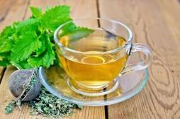 Boire du thé fait vivre plus longtemps et en meilleure santé