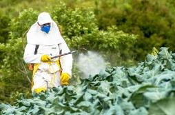 Glyphosate : l'exposition des bébés aux pesticides associée à l'autisme