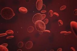 Caillots sanguins : des nouveaux anticoagulants réduisent le risque de saignements