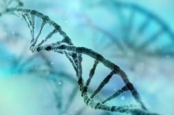 Cancer du sein : la génétique reste au cœur du dépistage