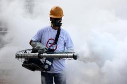 Dengue: un nouveau cas à Balma, en banlieue de Toulouse, déclenche une opération de démoustication