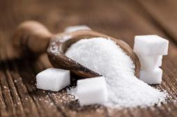 Cholestérol héréditaire:il vaut finalement mieux baisser les sucres que les graisses