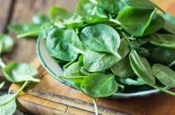 Pour devenir forts comme Popeye, mangez des légumes à feuilles vertes !
