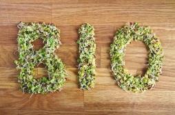 Alimentation bio: est-ce que cela réduit vraiment le risque de cancers?