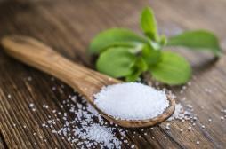Les édulcorants à base de stévia peuvent entraîner un déséquilibre du microbiome intestinal