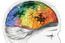 Déremboursement des médicaments anti-alzheimer : sont-ils vraiment