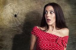Arachnophobie : une solution efficace pour réduire efficacement sa phobie