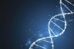 Autisme : des mutations de l'ADN en cause