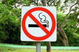 Strasbourg : c'est officiel, il est désormais interdit de fumer dans les parcs et espaces verts