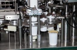 Aliments transformés : qu'est-ce qui se cache dans nos yaourts ?