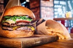Pourquoi notre cerveau préfère les aliments gras et riches en sucres