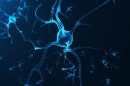 Décodage biologique : mieux comprendre l'origine de nos maladies