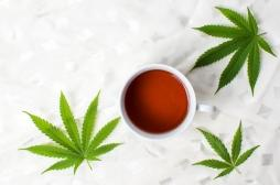 Vente légale de cannabis : une boutique ouvre en France