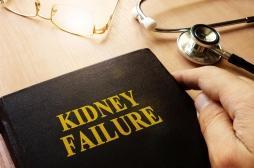 Insuffisance rénale : la Cour des comptes prône plus de greffes et de dialyses à domicile