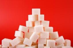Miel, sirop d'agave, sucre de coco... Quelles sont les 9 alternatives au sucre ?