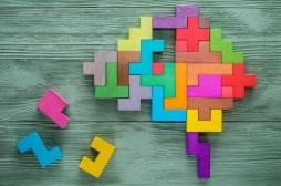 Cerveau : le rôle crucial de l'hippocampe dans le processus de mémoire