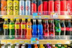 Toutes les calories ne sont pas égales face au risque d'obésité : 22 scientifiques alertent