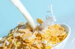 Alimentation : de l'herbicide découvert dans les céréales du petit déjeuner, faut-il s'inquiéter ?