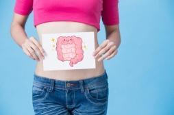 L'intestin est un organe noble et prioritaire !