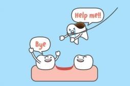 Scolarité, bagarres et jeux : que faire en cas de perte de dents ?