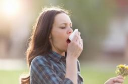 Allergie aux pollens de graminées : sept départements en alerte rouge
