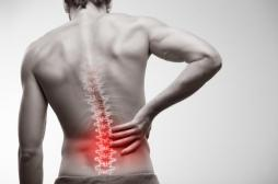Mal de dos : des implants discaux générés à partir de nos propres cellules pour remplacer les disques