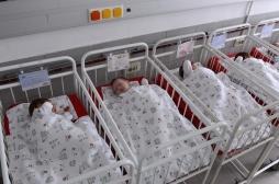 Pays-Bas : l'ADN de l'ex-directeur d'une banque de sperme analysé
