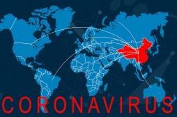 Coronavirus : quels sont les VRAIS chiffres ?