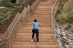 Pour surveiller votre cœur, montez les escaliers