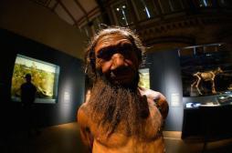 Infections : Néandertal a dopé notre système immunitaire