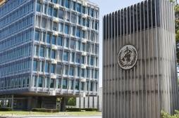 """L'OMS appelle à éviter le """"nationalisme vaccinal"""""""