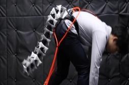 Une queue robotique bientôt disponible pour améliorer votre équilibre