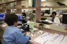 Cancer du pancréas : 9 000 décès par an en France