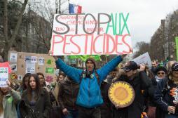 Pesticide : 70 % des Français ne veulent plus du glyphosate