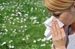 Alerte rouge aux pollens de graminées en France