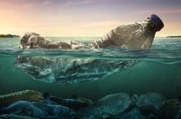 Le plastique dans les océans pourrait faire diminuer notre oxygène