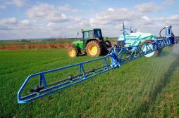 Pesticides : information judiciaire ouverte après 24 intoxications dans une école
