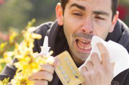 Pollens : la carte de France des allergies