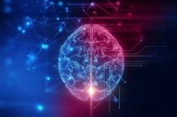 Troubles de l'attention : un trouble de la communication entre deux régions cérébrales