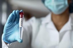 Ebola : un anti-parasitaire permettrait de lutter contre le virus