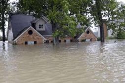 Tempête Harvey : un risque élevé de propagation de maladies