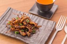 Régime : pourquoi pas des insectes?