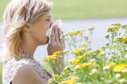 Allergies : 28 départements en zone rouge