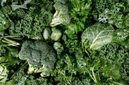 Au moins une portion de légumes verts par jour contre le vieillissement du cerveau