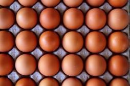Œufs contaminés : le ministère publie la liste des produits sur le marché