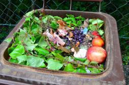 Hôpital : un gaspillage alimentaire de 420 millions d'euros