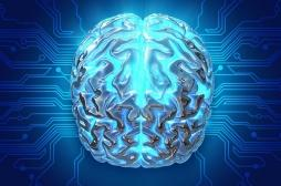 Fibromyalgie : des réseaux de neurones hypersensibles dans le cerveau