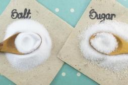 Goût : comment notre cerveau fonctionne pour distinguer le sucré du salé ?
