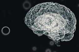 Covid-19 : le virus peut-il infecter le système nerveux central ?