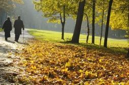 Séniors : la prévention des chutes doit aussi se concentrer sur l'extérieur